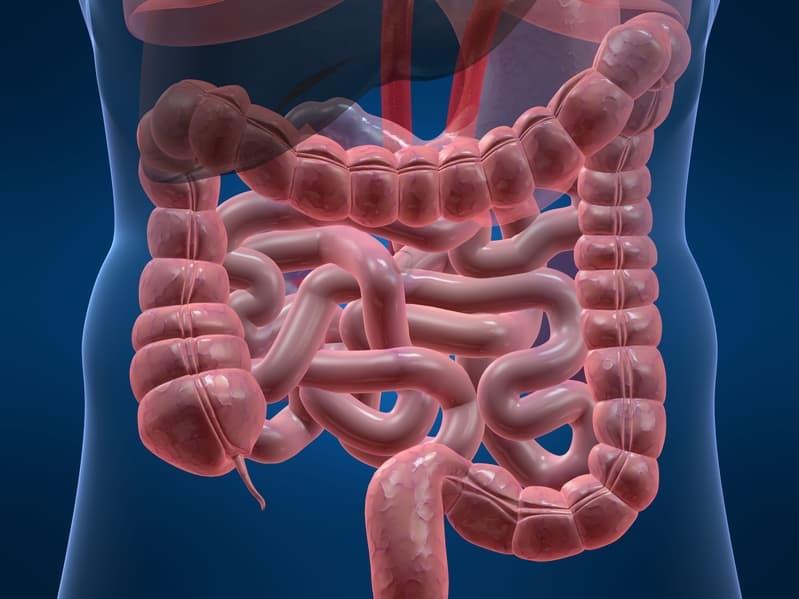 starke Bauchschmerzen - ein Anzeichen für Blinddarmentzündung