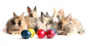 Osterfest mit Kindern