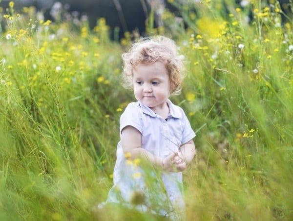 Giftpflanzen im Garten (© Thinkstock)
