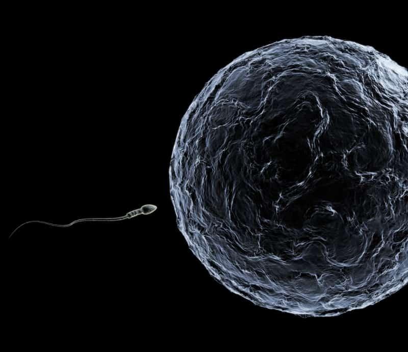 Gründe für Unfruchtbarkeit bei Männern und Frauen