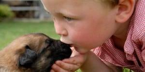 Junge küsst seinen Hund auf die Schnauze