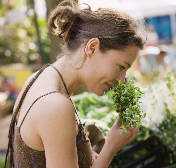 Wohlriechend und anregend - Kräuter für die Fruchtbarkeit (© Thinkstock)