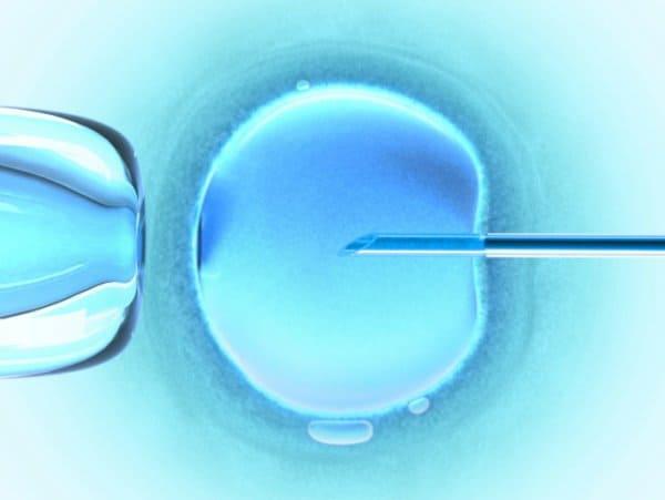 Eizellen einfrieren (© Thinkstock)