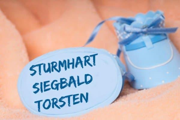 SS-Torsten (c) Thinkstock