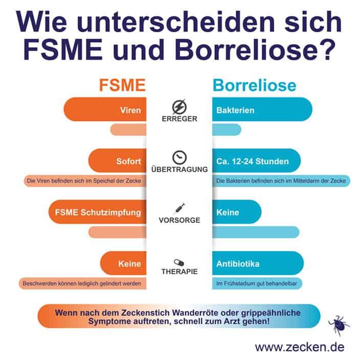 Infektionsgefahr durch Zecken: FSME und Borreliose (© Zecken.de, Pfizer Deutschland GmbH)