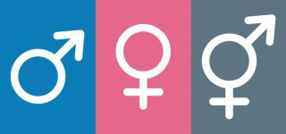 Das dritte Geschlecht (Symbolfoto von Adobe Stock / von fotohansel)